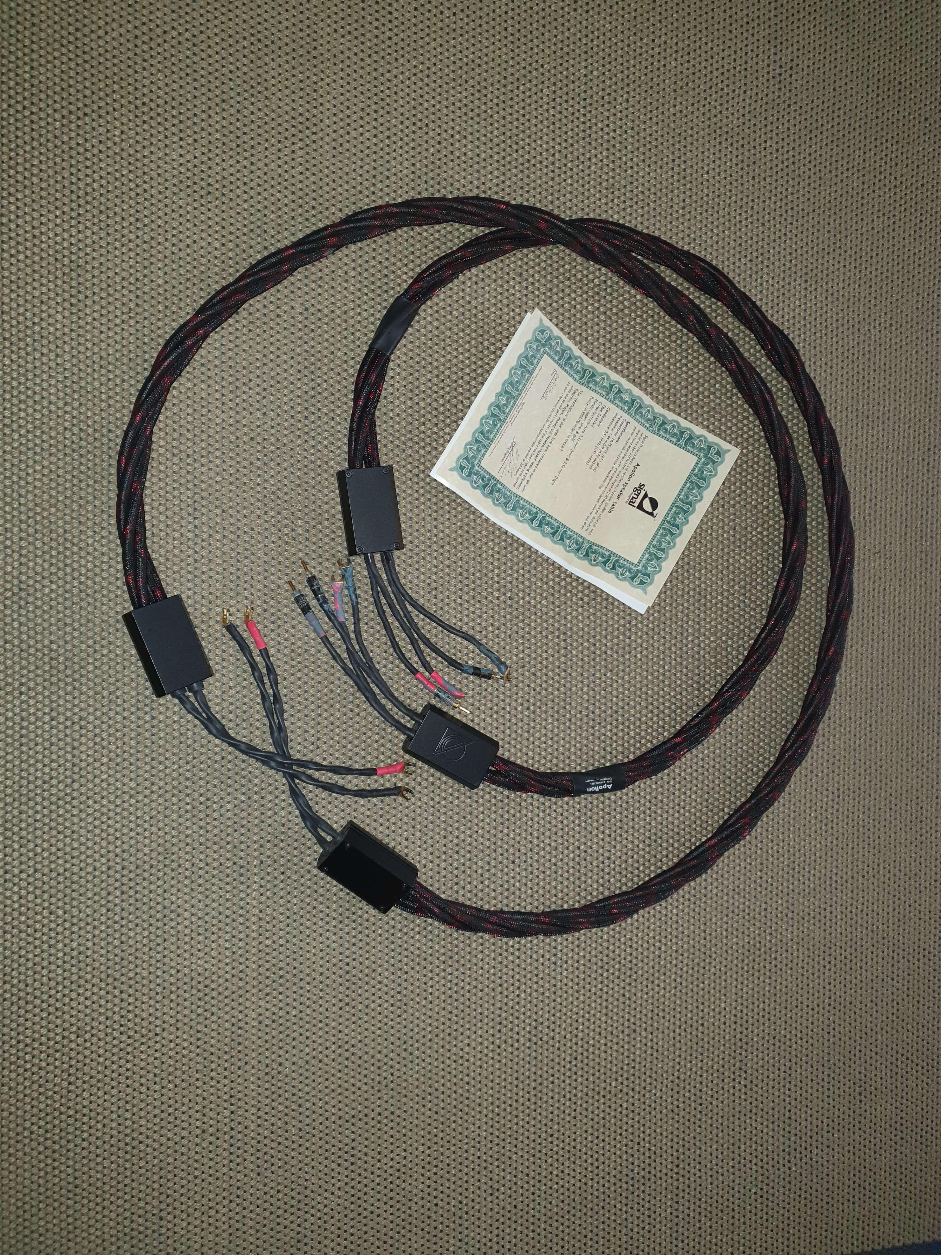 CABLE ENCEINTES SIGNAL PROJECTS AUDIO APOLLON 2x2.4m